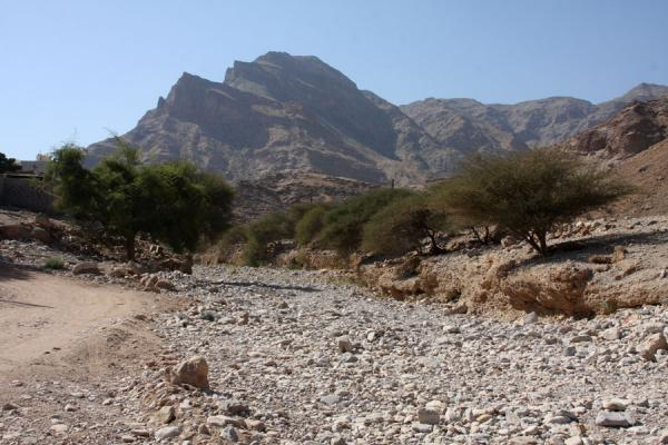 Dry riverbed in Wadi Mayh | Wadi Mayh | Oman