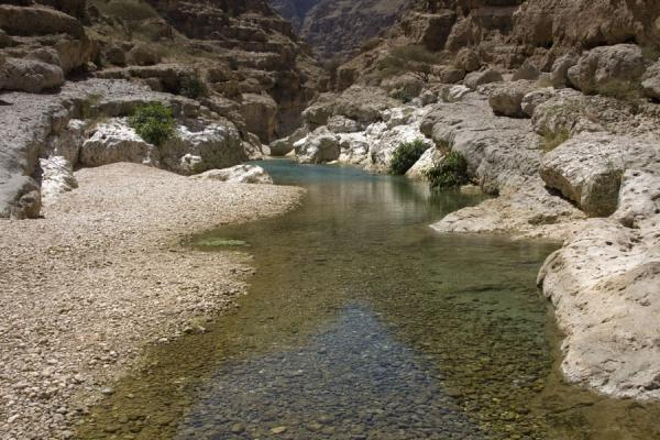 Water flowing through Wadi Shab | Wadi Shab | Oman
