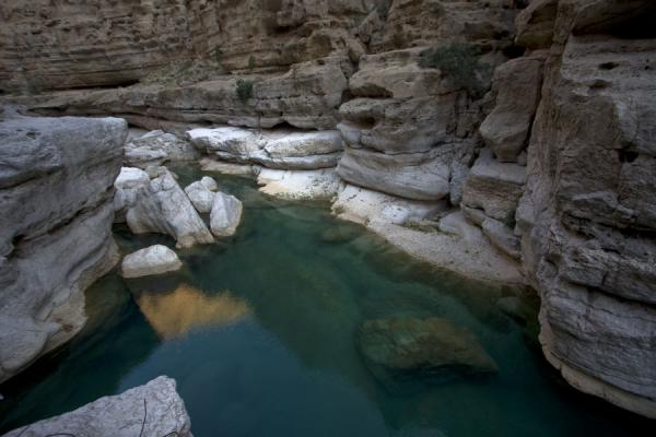 Picture of Wadi Shab (Oman): Green water in a pool of Wadi Shab
