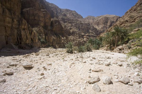 Picture of Wadi Shab (Oman): Dry riverbed at the entrance of Wadi Shab