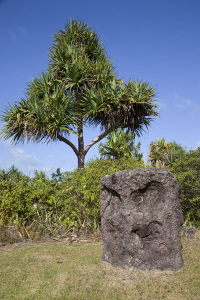 Picture of Badralchau monoliths (Palau): Monolith with carved face at Badrulchau