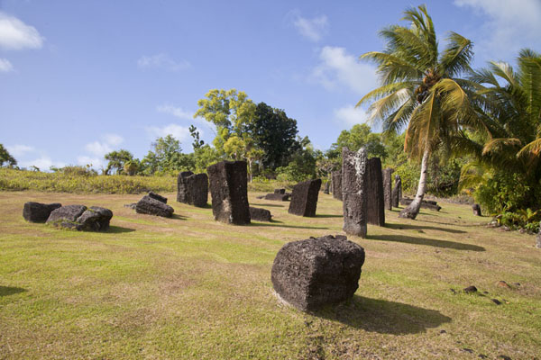 Overview of the central field of Badrulchau on which most monoliths can be found | Badralchau monoliths | Palau