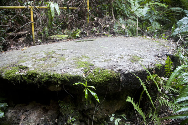 Foto van Side view of the stone money disk still lying where it was quarriedNgurusar Bay - Palau