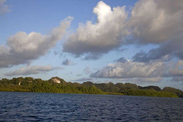 Foto van The coastline of Ngurusar Bay near the stone money quarryNgurusar Bay - Palau