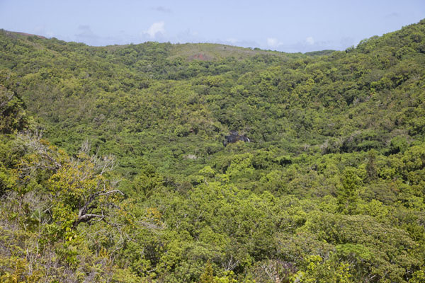 Foto van The forest-covered hills with Ngardmau waterfall in the middleNgardmau - Palau