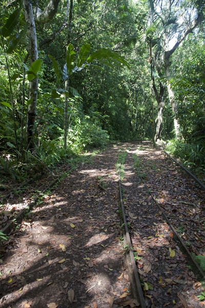 Old train tracks once allowing the transportation of bauxite | Ngardmau waterfall | 巴劳