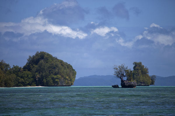 Picture of Rock Islands (Palau): Some of the small Rock Islands covered by trees