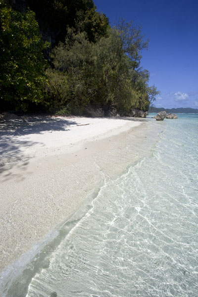 Picture of Rock Islands (Palau): Dazzling white beach on one of the Rock Islands