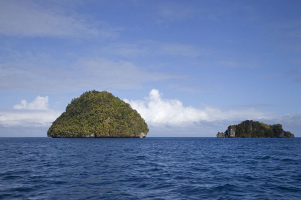 Picture of Rock Islands (Palau): Many of the Rock Islands are just small, tree-covered outcrops jutting out from the sea