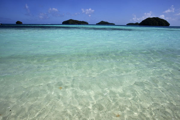 Photo de Turquoise waters with some of the rock islands in the backgroundRock Islands - Palaos