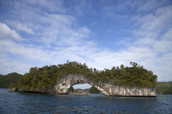 Foto van The famous natural bridge of the Rock IslandsRock Islands - Palau