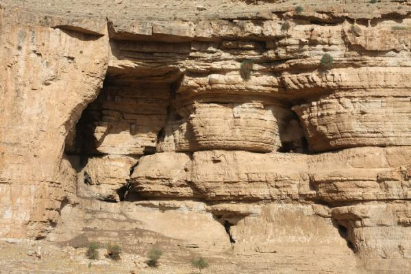 Close-up of the steep cliffs of Wadi Qelt | Wadi Qelt | Palestina