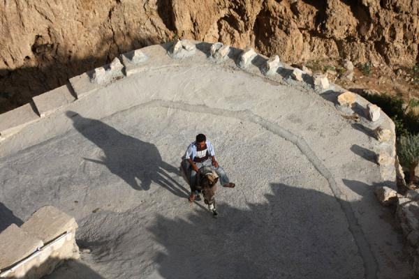 Foto van Palestinian going up the road on his muleJericho - Palestina