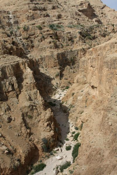 Narrow and dry Wadi Qelt | Wadi Qelt | Palestina