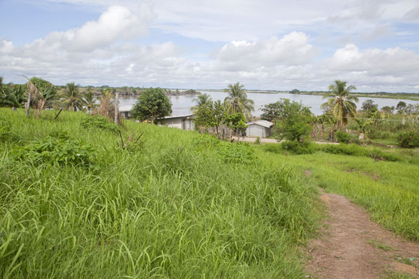 View over the lower part of Angoram with the Sepik river in the background | Angoram | Papoea Nieuw Guinea