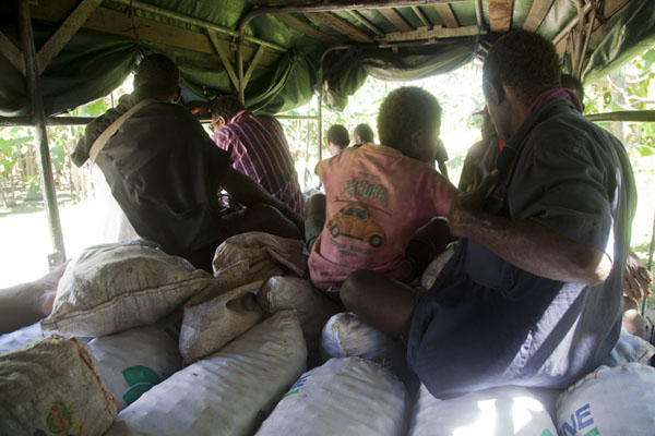 Picture of Betel nut run Angoram to Madang (Papua New Guinea): Betel nut bags are seats on the PMV to Madang