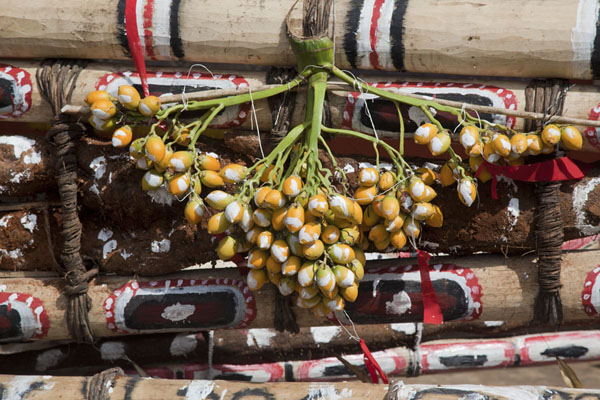 Photo de Detail with betel nut and painted wooden sticksGumilababa - Papouasie Nouvelle Guinée