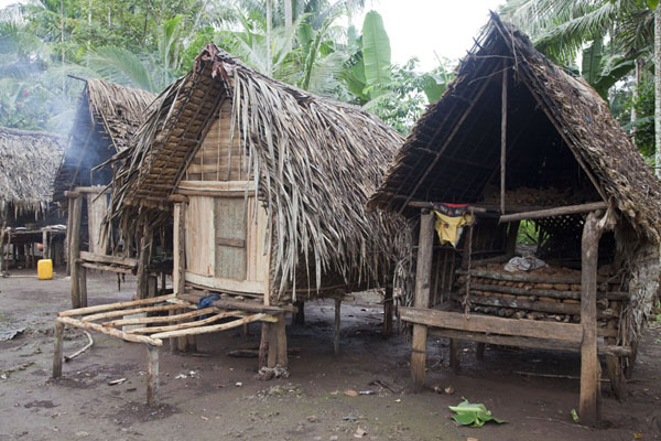 Picture of Huts with yam waiting to be consumedKaibola - Papua New Guinea