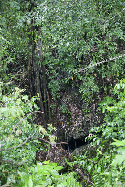 Foto di Entrance to a cave with human bones in the vicinity of Kaibola - Papua Nuova Guinea - Oceania
