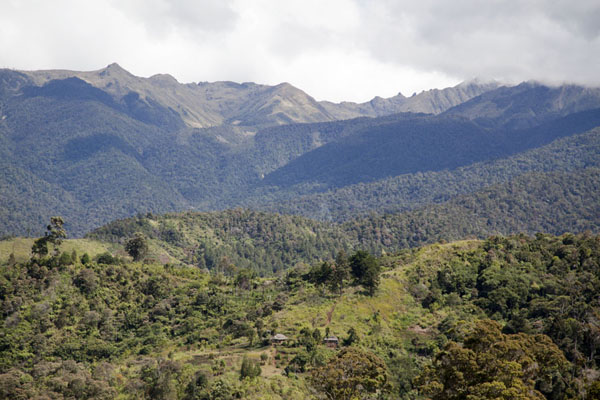 Foto di Papua Nuova Guinea (Panoramic view of the Keglsugl with the high Bismarck mountain range in the background)