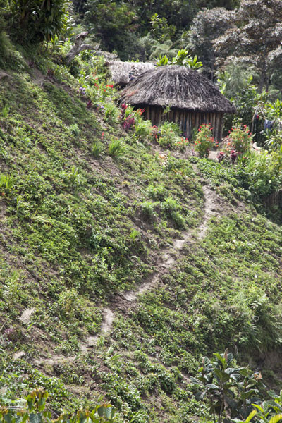 Picture of Keglsugl (Papua New Guinea): Path and house near Keglsugl
