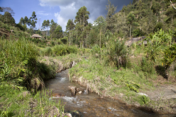 Picture of Keglsugl (Papua New Guinea): Small river running through the lower part of Keglsugl