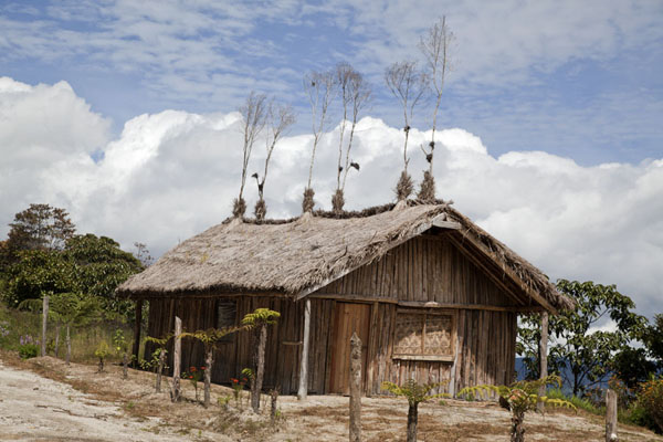 Picture of Keglsugl (Papua New Guinea): Houses with branches on the roof are often seen in the region around Keglsugl