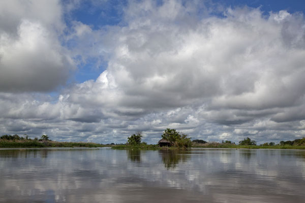 Clouds reflected in the tranquil waters of the Sepik river in the morning | Río Keram | Papúa Nueva Guinea