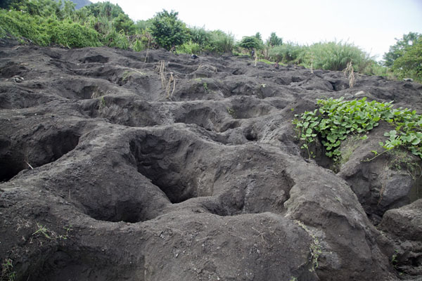 Foto van Deep holes in the volcanic ash where the gatherers dig in search for megapode eggsMatupit - Papoea Nieuw Guinea