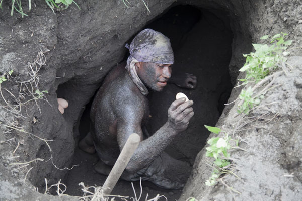 Egg gatherer showing his latest catch in a deep hole in the volcanic ash - 巴布亚新畿内亚 - 大洋洲