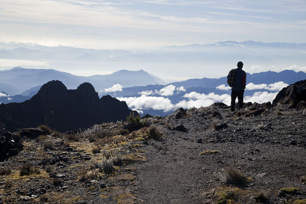 Picture of Mount Wilhelm (Papua New Guinea): Walking down from the summit with the world at our feet