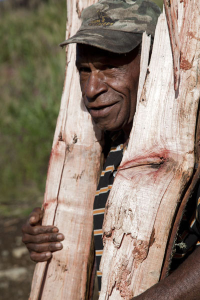 Foto van Man collecting firewood for sale in Keglsugl in the highlandsPapuas - Papoea Nieuw Guinea
