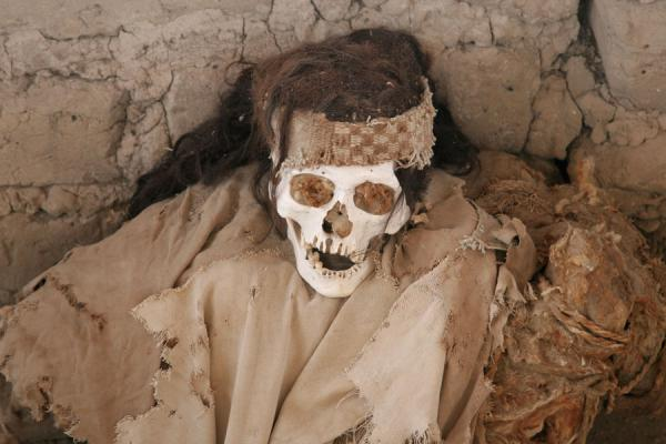 Skull with hair at Chauchilla cemetery | Chauchilla cemetery | Peru