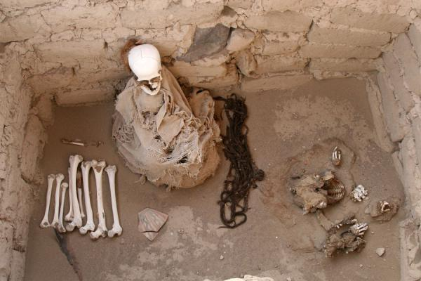 Picture of Skulls and bones in a grave at Chauchilla cemetery - Peru - Americas