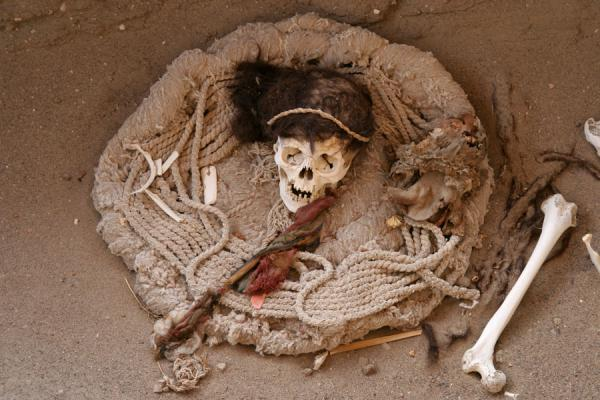 The body has disappeared over time, the skull remains | Chauchilla cemetery | Peru