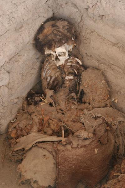 Picture of Remains of skeleton at Chauchilla cemetery