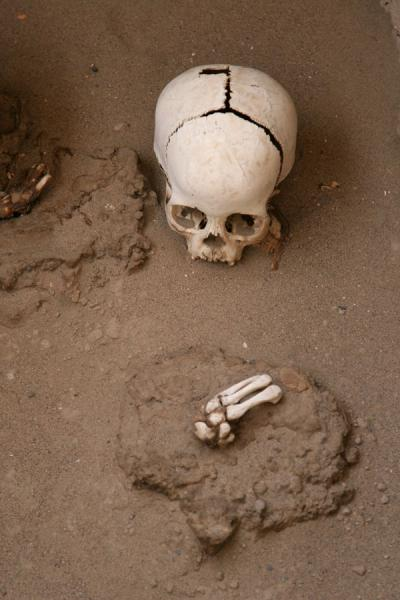 Picture of Chauchilla cemetery: skull and bones