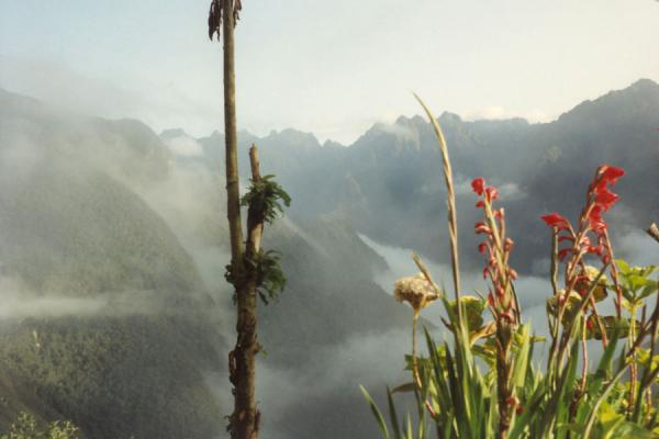 Picture of Machu Picchu (Peru): View over the Andes from Wiñay Wayna