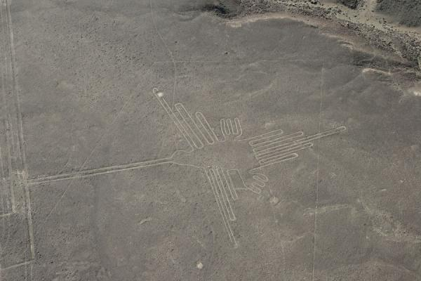 The Hummingbird, probably the most famous figure of Nazca | Nazca lines | Peru
