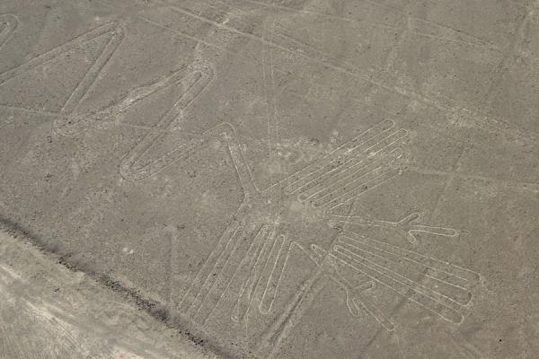 Picture of One of the longest figures of the Nazca lines: the Pelican