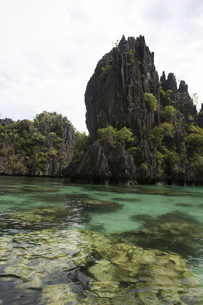 Limestone formations in the Big Lagoon | Bacuit archipelago | Philippines