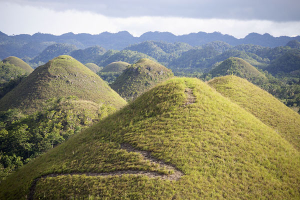 View from the viewpoint over the Chocolate Hills - 非律賓