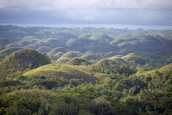 Afternoon sunlight over the Chocolate Hills | Chocolate Hills | Filippine