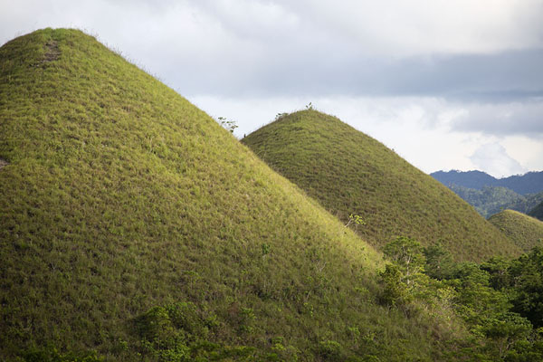 Photo de Two of the Chocolate HillsChocolate Hills - Philippines