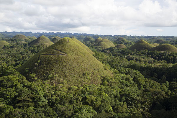 Foto van Some of the Chocolate Hills seen from the viewpointChocolate Hills - Filippijnen