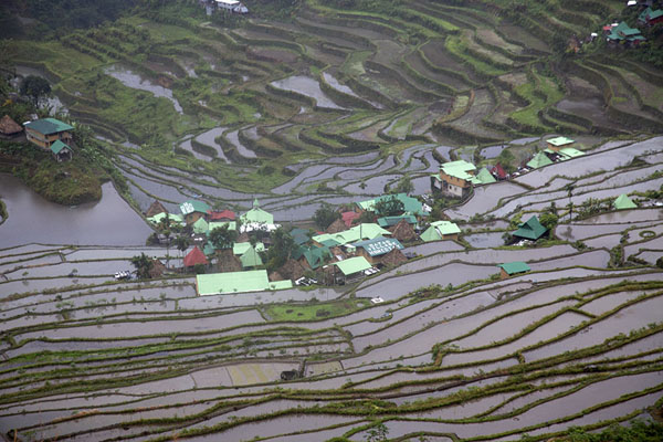 Foto van Rice paddies with water surrounding houses of Batad villageBatad - Filippijnen
