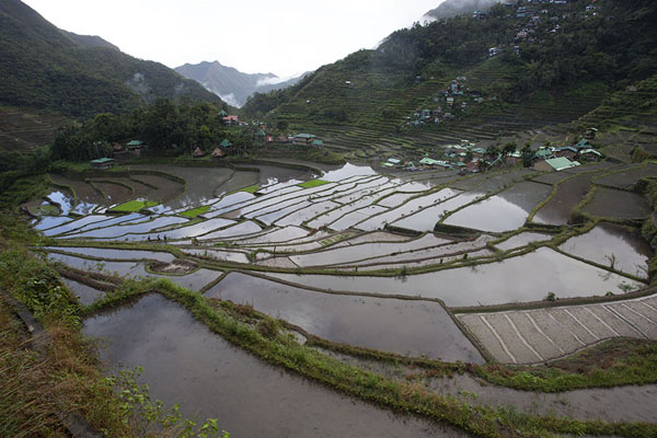 | Ifugao rice terraces | Philippines