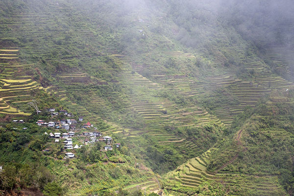 Foto van Hills covered by rice paddies around the village of CambuloBatad - Filippijnen