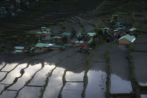 Rice paddies and part of the village of Batad | Ifugao rice terraces | Philippines