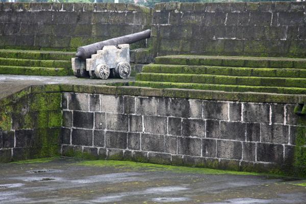 Picture of Cannon on mossy defensive wall at Intramuros
